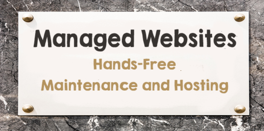 Take advantage of low pricing on our value-added maintenance and hosting services.