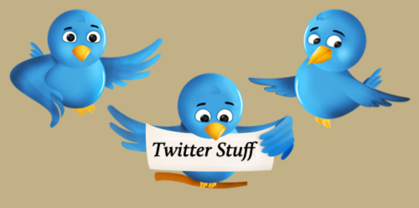 A collection of 25 twitter apps, tools, resources, plugins, directories, and services.